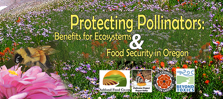 Protecting_pollinators.png