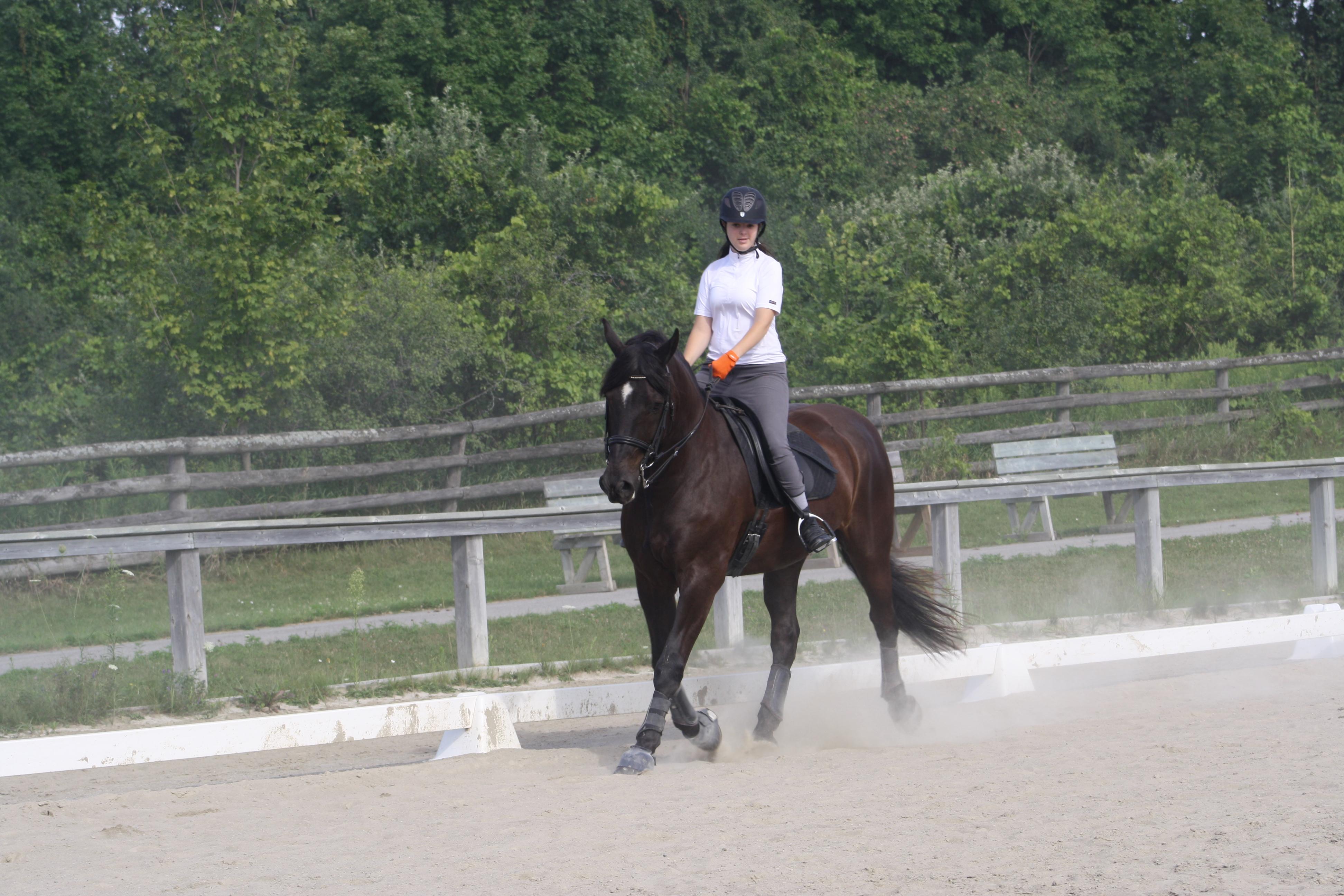 Amanda riding a horse