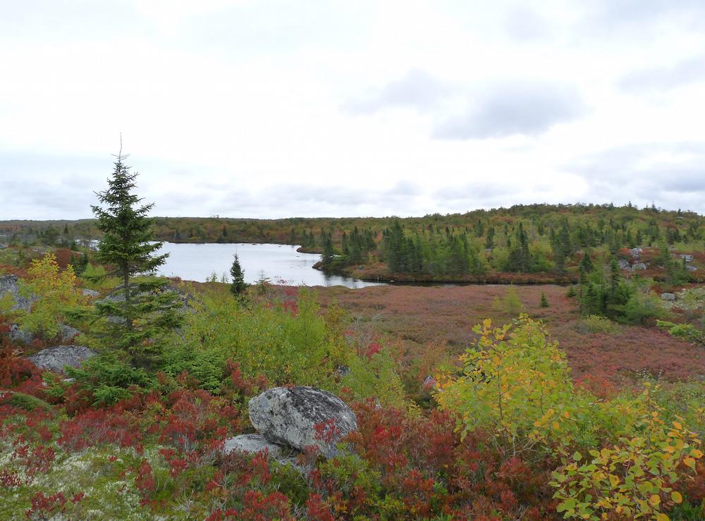 Hike the Greenbelt—The Bluff Trail