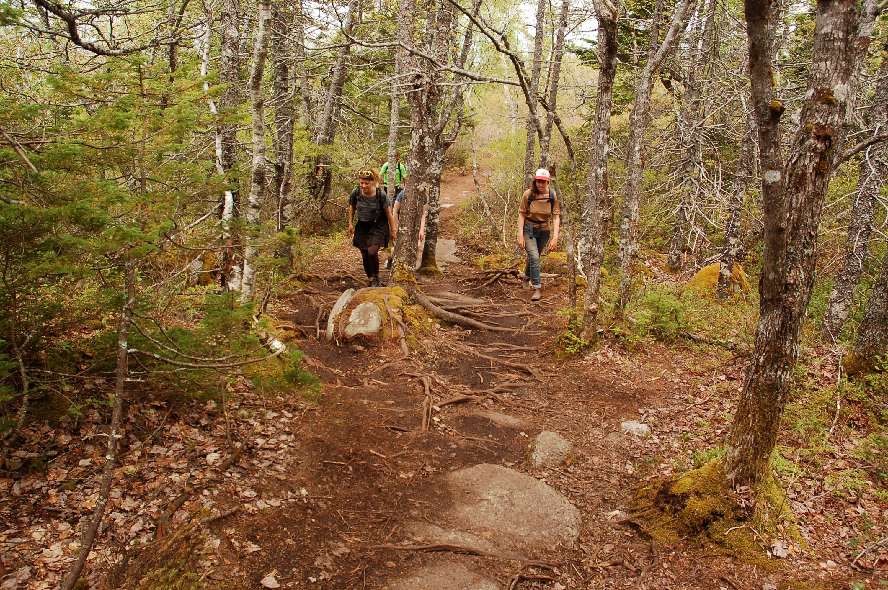 Hike the Greenbelt - Bluff Trail