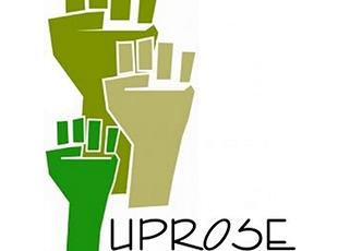 UpRose-logo.png