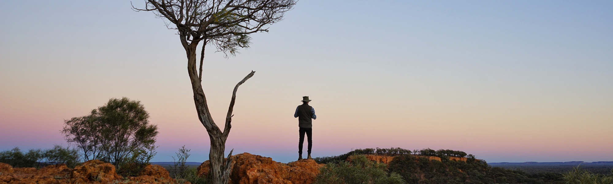 Election 2020: Where the parties stand on protected areas and land management jobs for Queensland