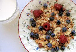 Bowl of cereal and berries