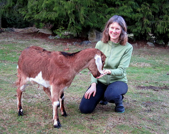 Smiling, middle aged, white woman, with shoulder length hair, wearing rubber boots, crouched down outside beside a Nubian goat with floppy ears who is nuzzling her hand.