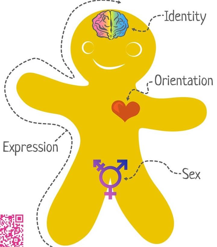 Genderbread.jpg