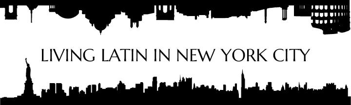 llinyc-logo.jpeg