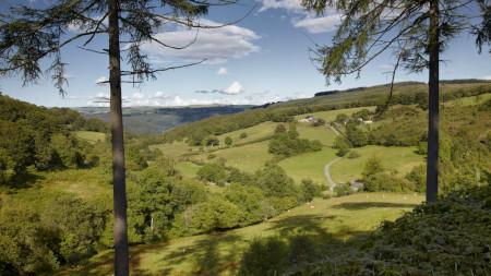 Verdant Wybrnant Valley