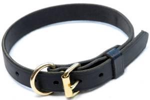 K-9 Dog Collar