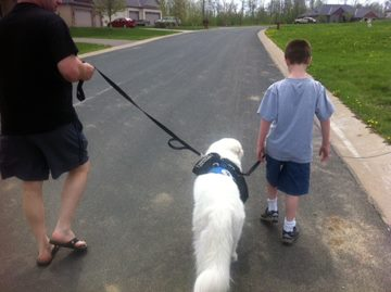 Tethering with an autism service dog
