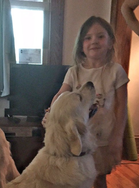 The kiddo looks so proud to be petting such a big dog