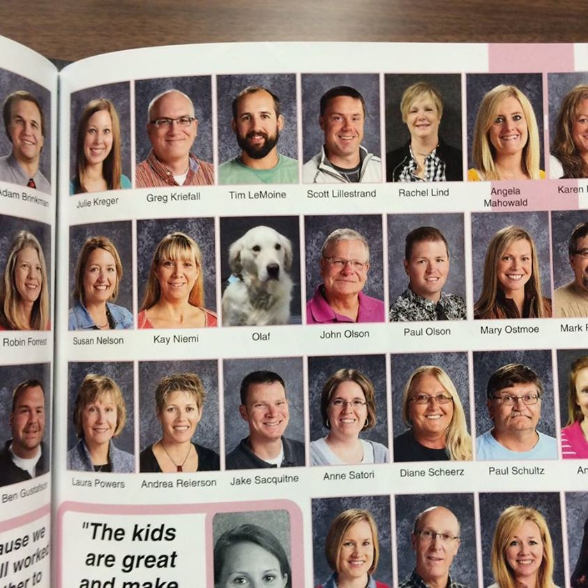 School therapy dog in the school yearbook