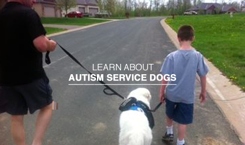 Learn about autism service dogs