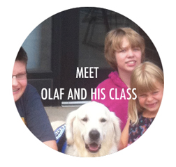 Meet Olaf and his class