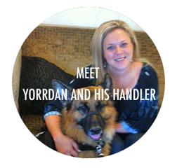 Meet Yorrdan and his handler