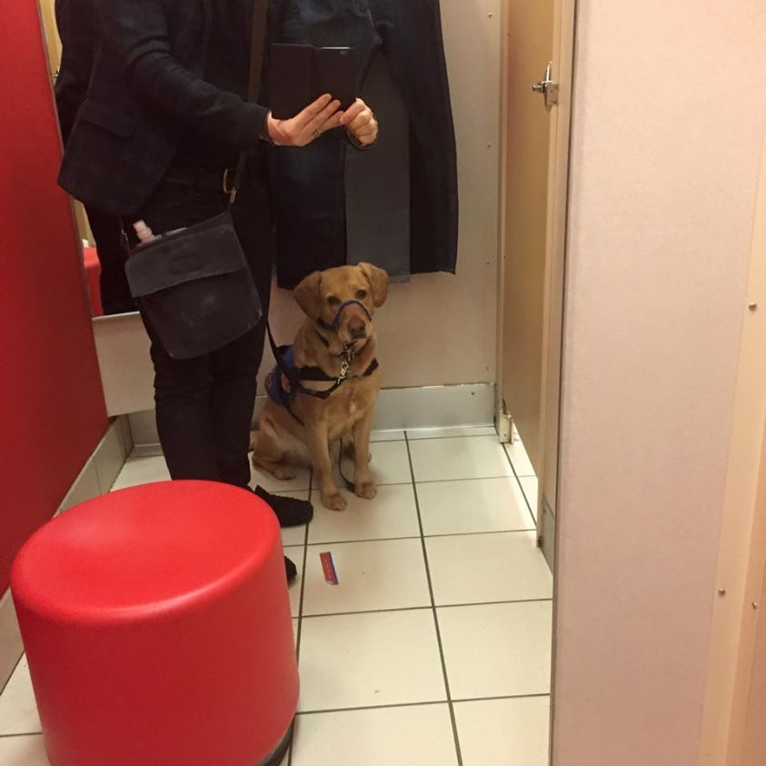 In the dressing room at Target, the service dog in training comes in