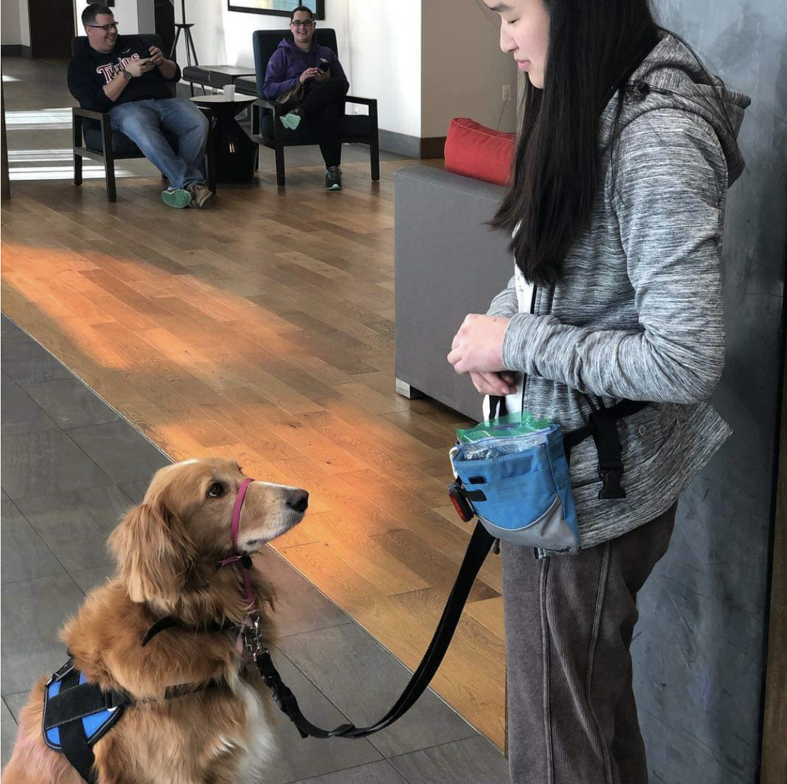 Trains with her handler