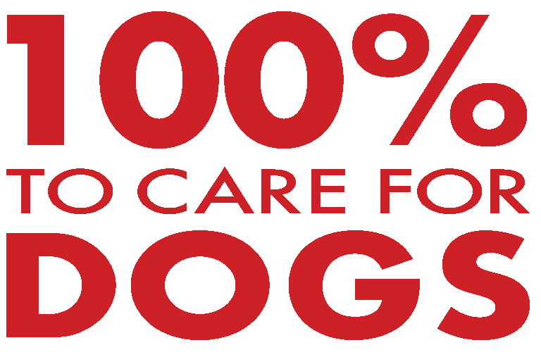 100% to care for dogs
