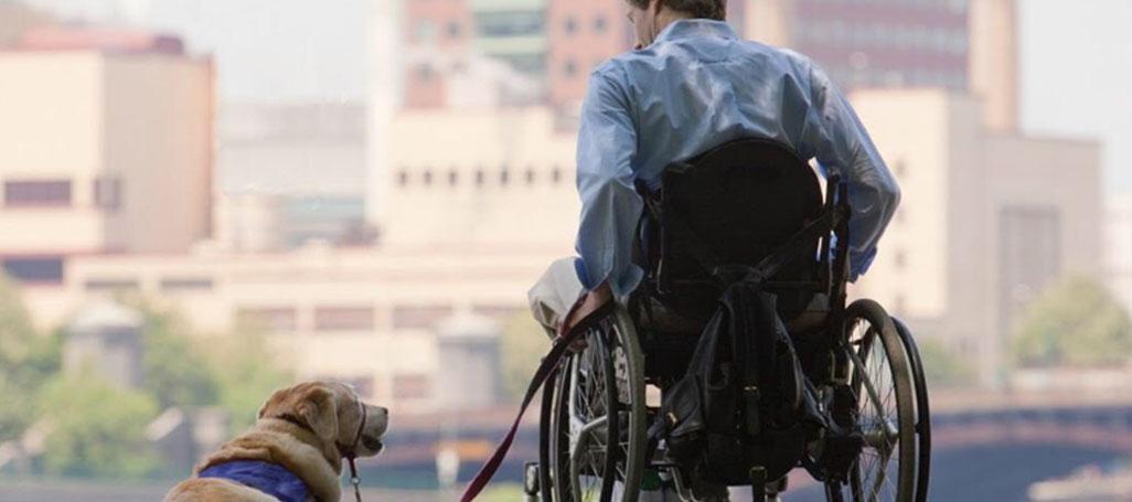PAWSITIVITY SERVICE DOGS | Saving animals. Serving community.