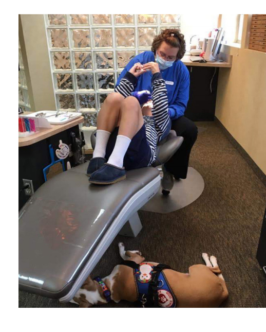Service dog goes to dentist with his boy with autism