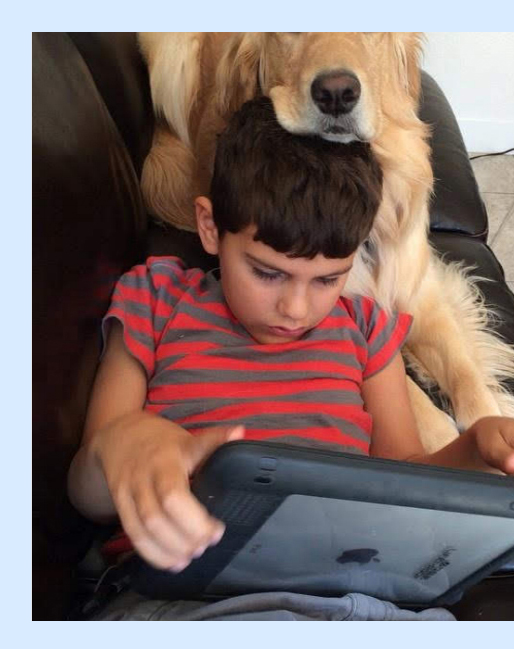 Haven the service dog and his boy with autism