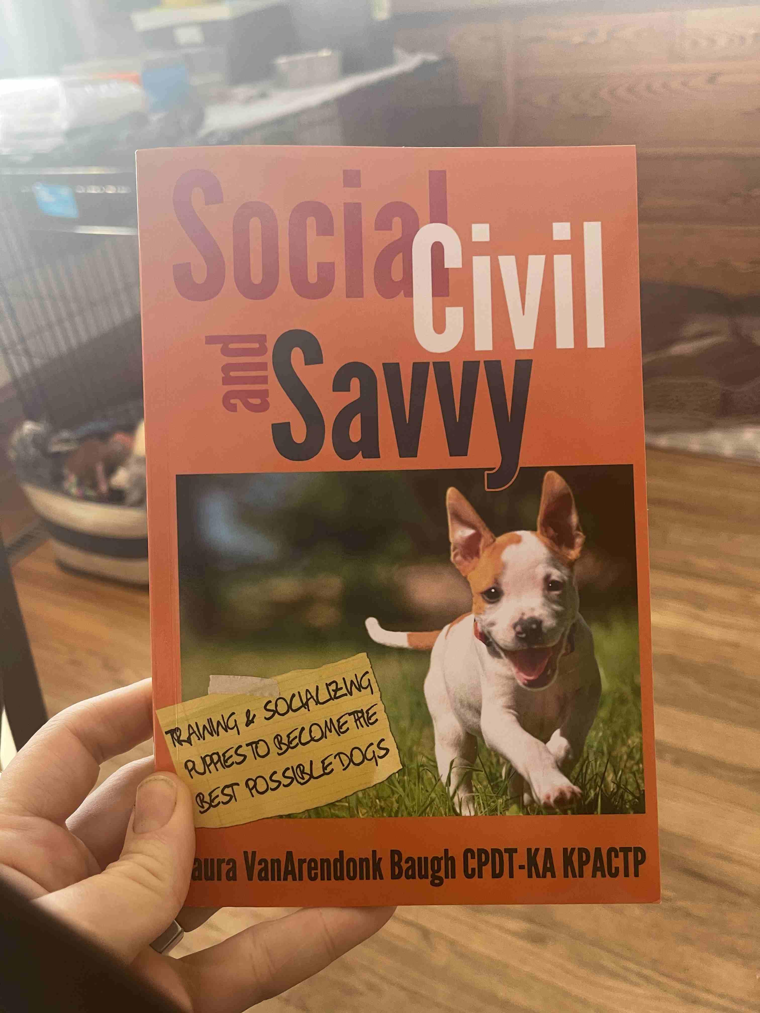 New book by VanArendonk