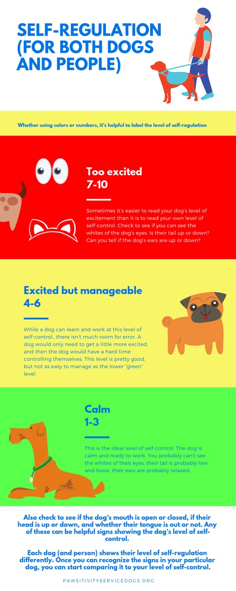 Reading the signs of arousal in dogs