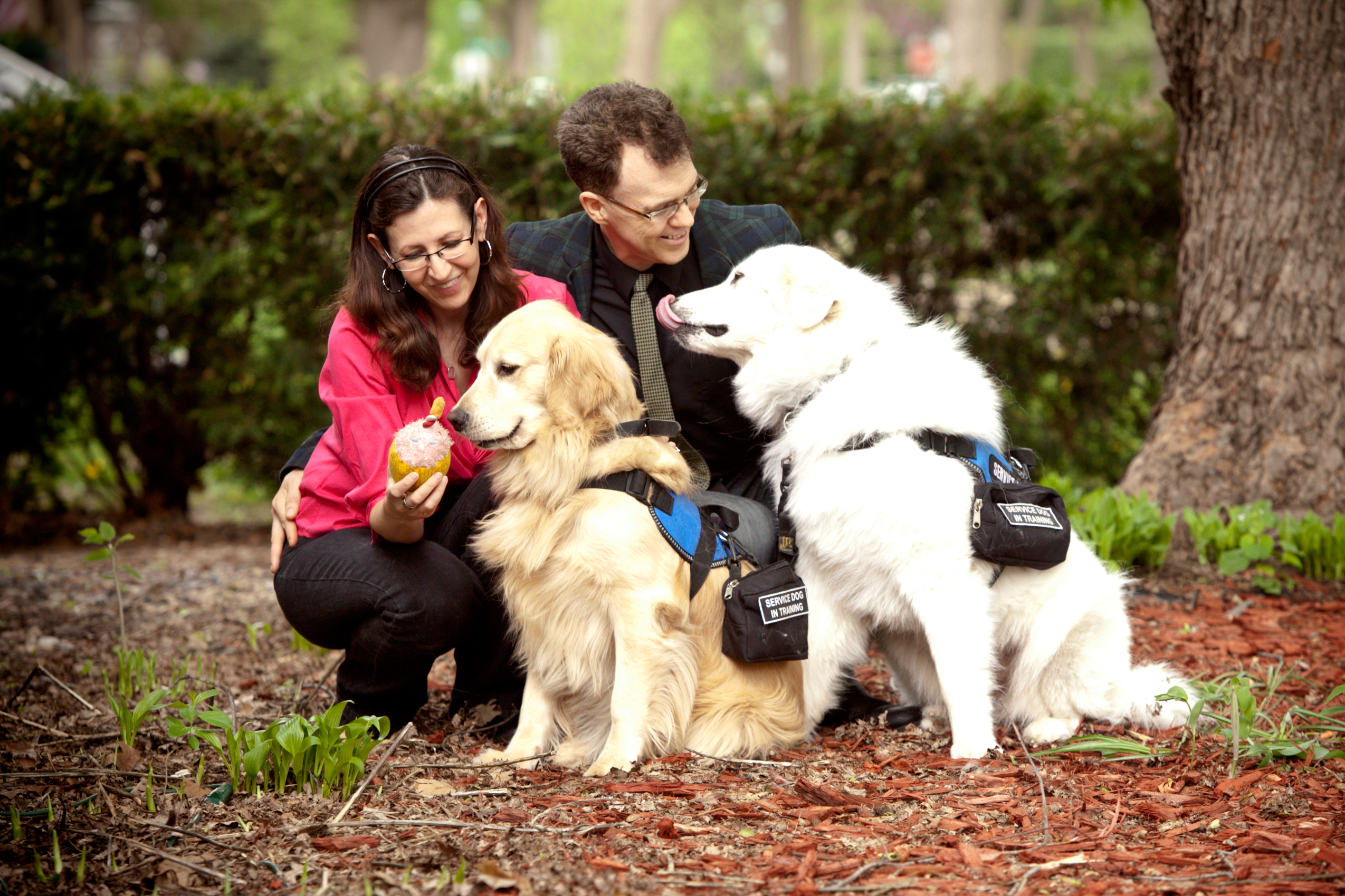 Tom and Julie Coleman of Pawsitivity Service Dogs