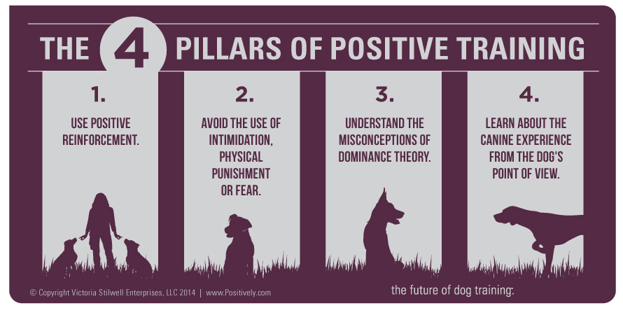 Pillars of Positive Training