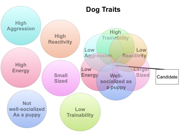 Dog Traits