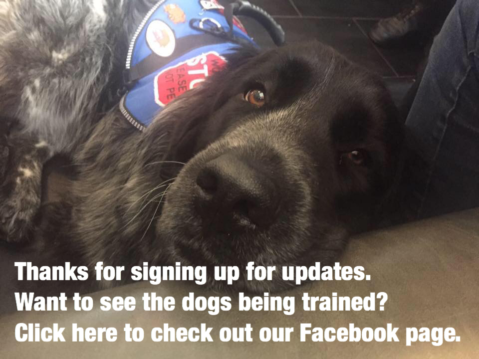Thanks for signing up for updates.