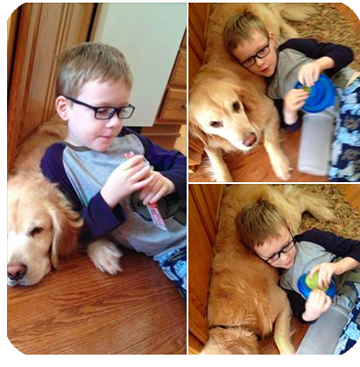 Autism Service Dog with his boy