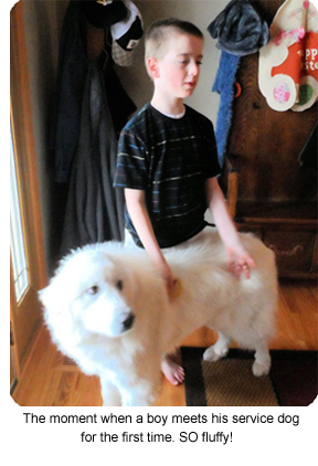 The moment when a boy meets his service dog for the first time. SO fluffy!
