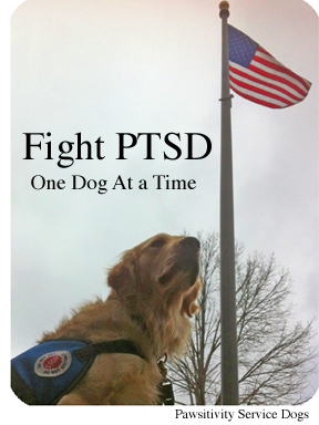 Fight PTSD--one dog at a time.