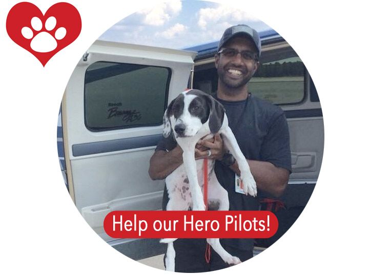 Help our hero pilots
