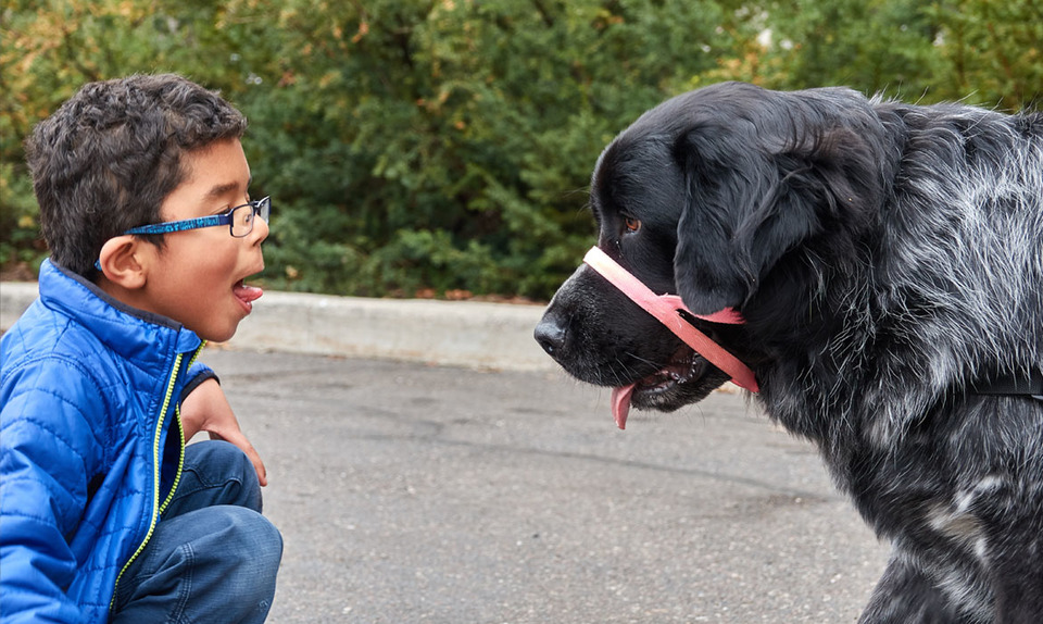 Service Dog Danny Boy and his boy who loves him