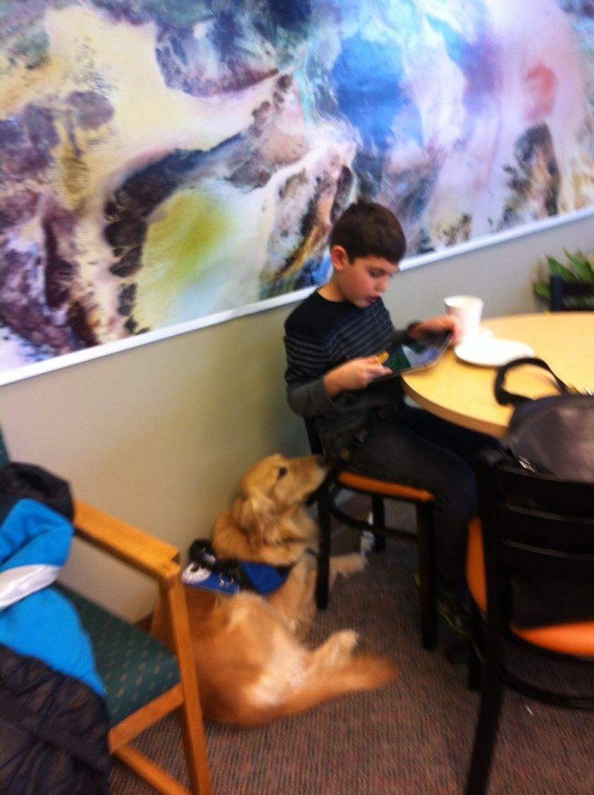 Autism service dog hanging out with his boy at a restaurant