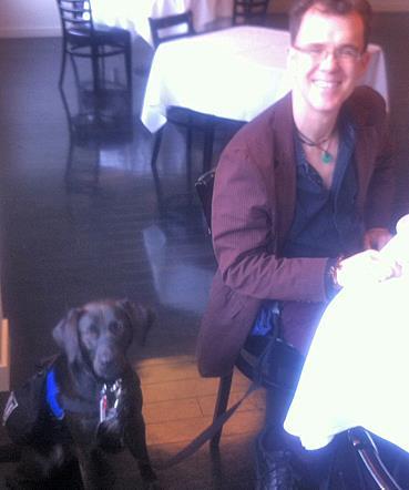 Labrador retriever mix doing a sit-stay