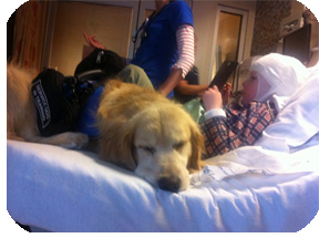 Boy getting an EEG with his service dog