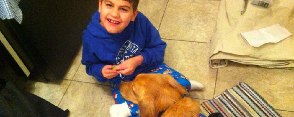 Service dog doing lap in her boy's lap