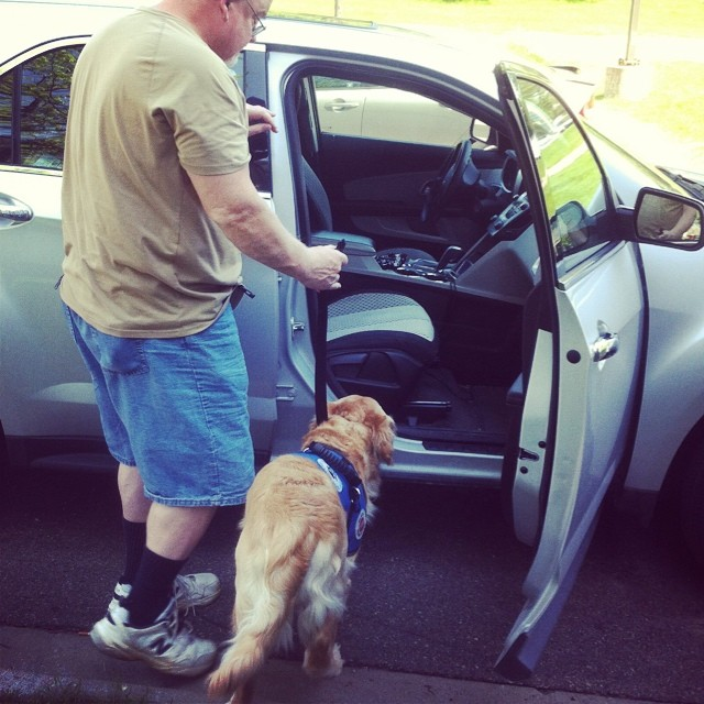 Otto learns to get into a car easily