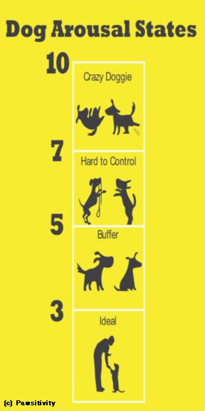 Dog arousal states