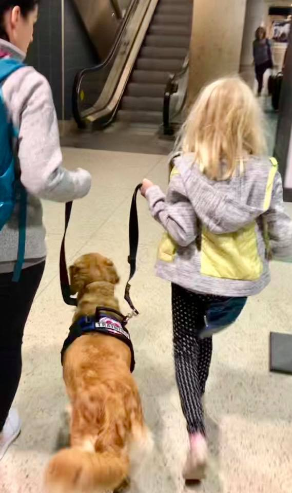 Service dog and her girl and the girl's mom practice at the airport
