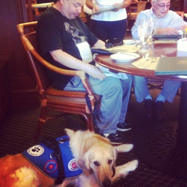 As part of working with his handler, Homer trains with him in a public place