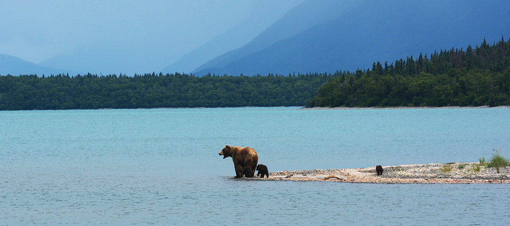 Naknek Lake, Katmai National Park, Alaska