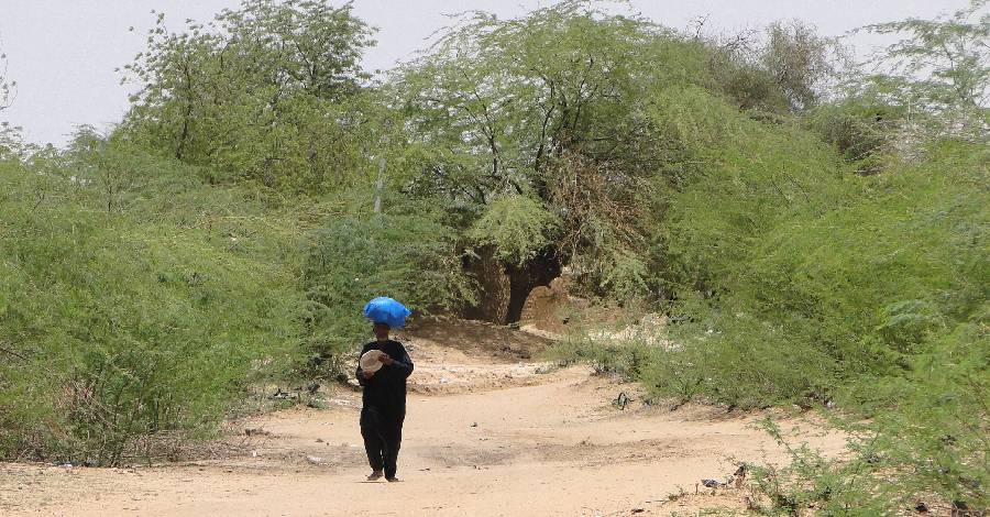 visuel_Sahel_Scene_Dori_Sahel_Region_Burkina_Faso.jpg