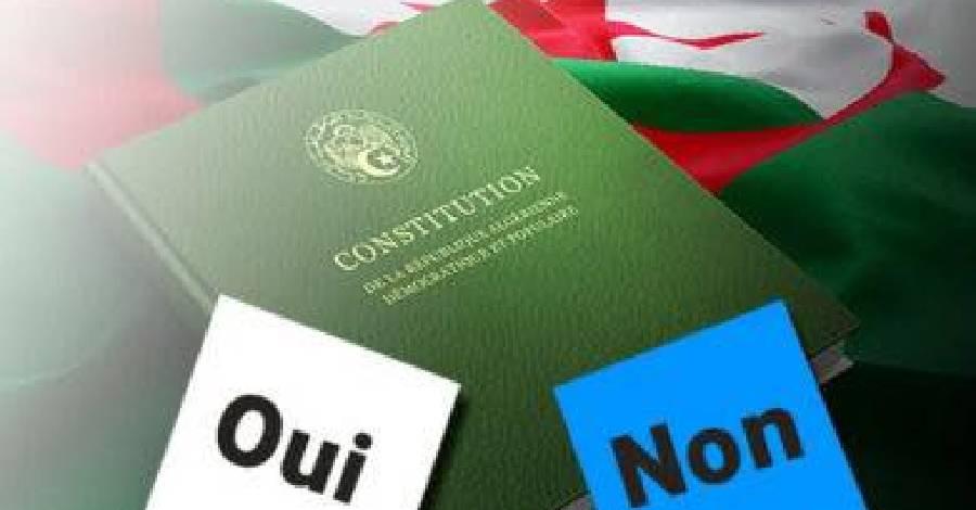 visuel_algerie-constitution.jpg