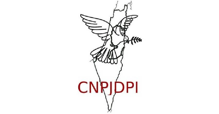 visuel_logo-CNPJDPI.jpg