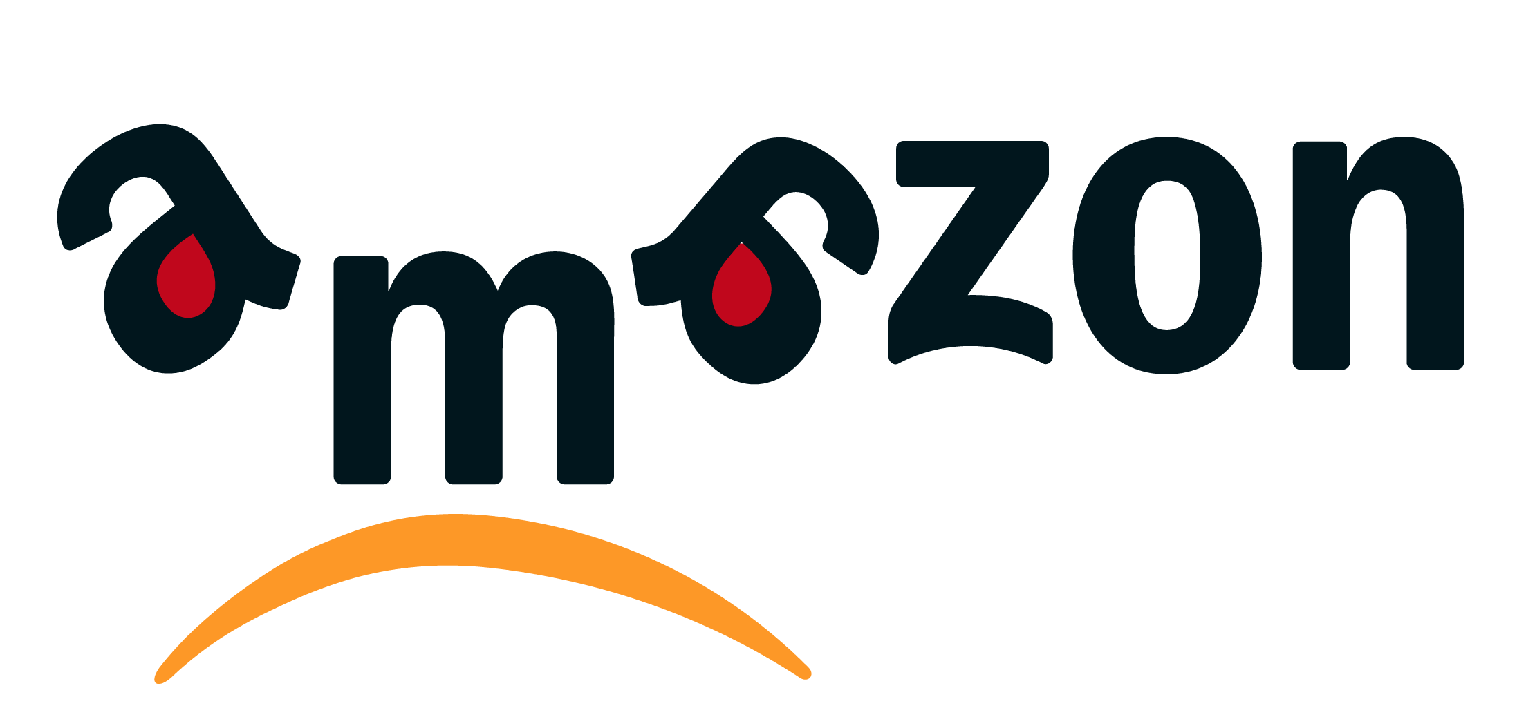 visuel-amazon.png