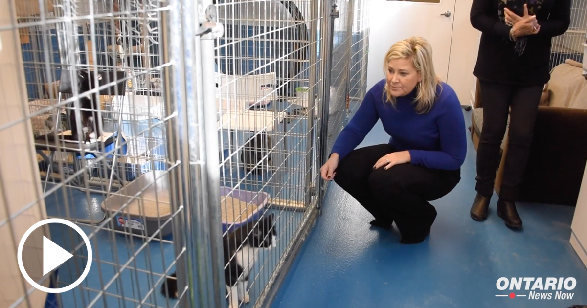 MPP Christine Hogarth Visits Etobicoke Humane Society to highlight Her Bill, Protecting Our Pets Act