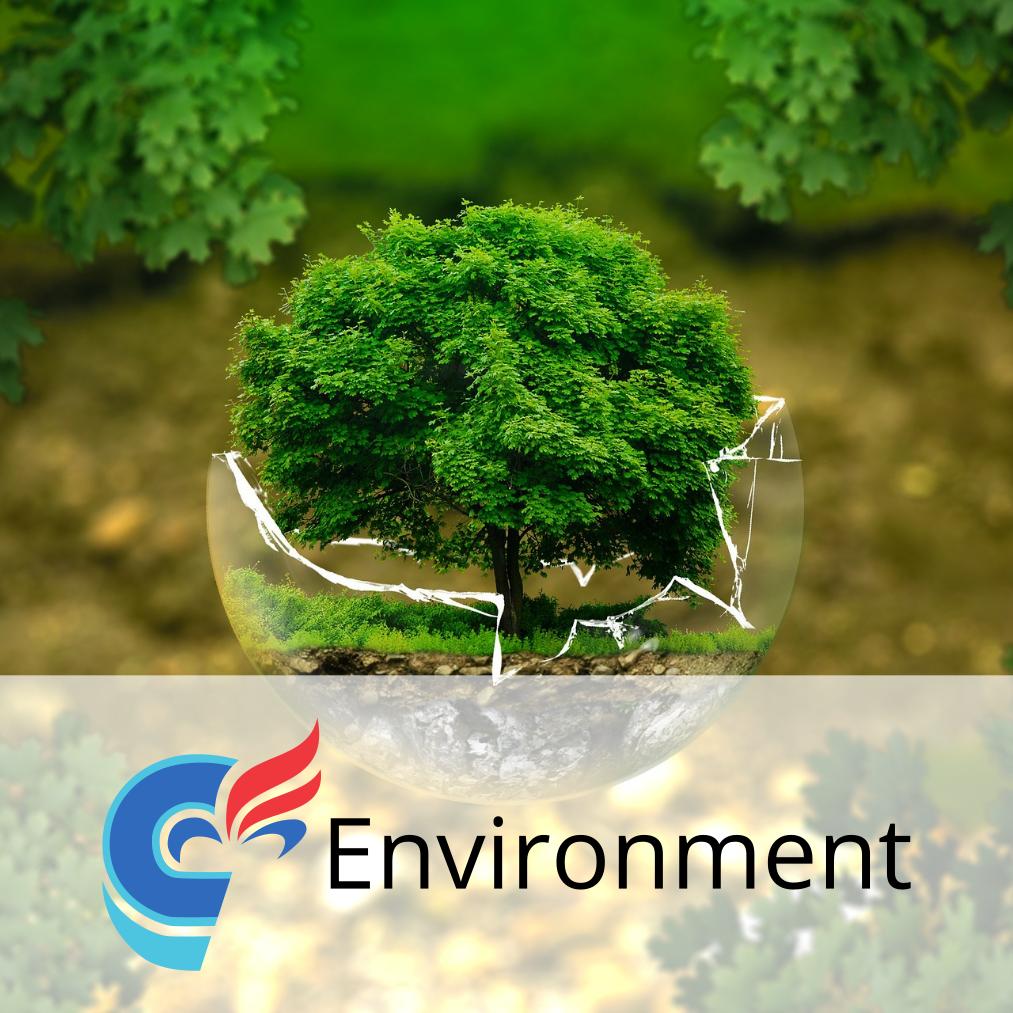 environnement_en.png
